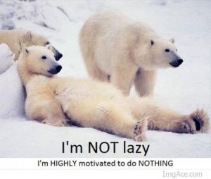im-not-lazy-im-highly-motivated-to-do-nothing-2_large