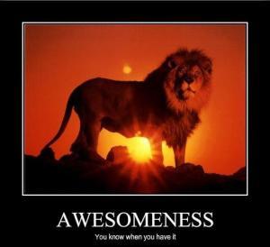 awesomeness1